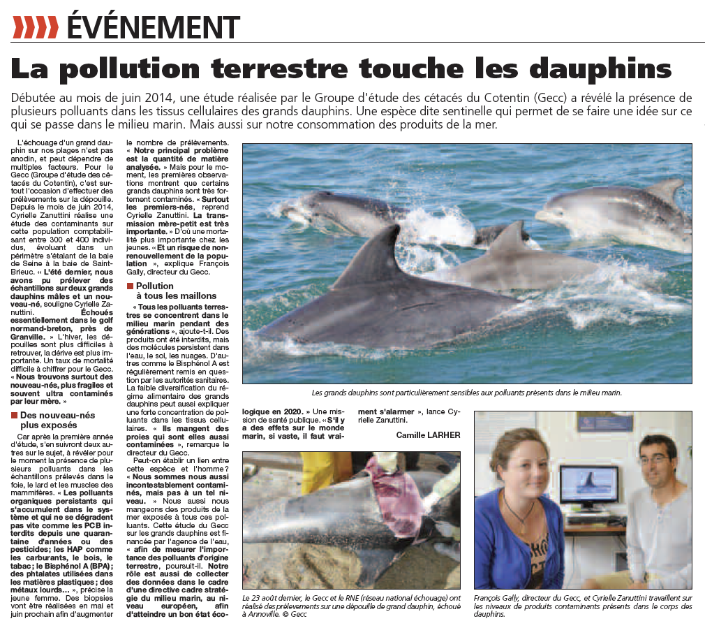 Pollution_dauphin_PresseManche_3avril2015
